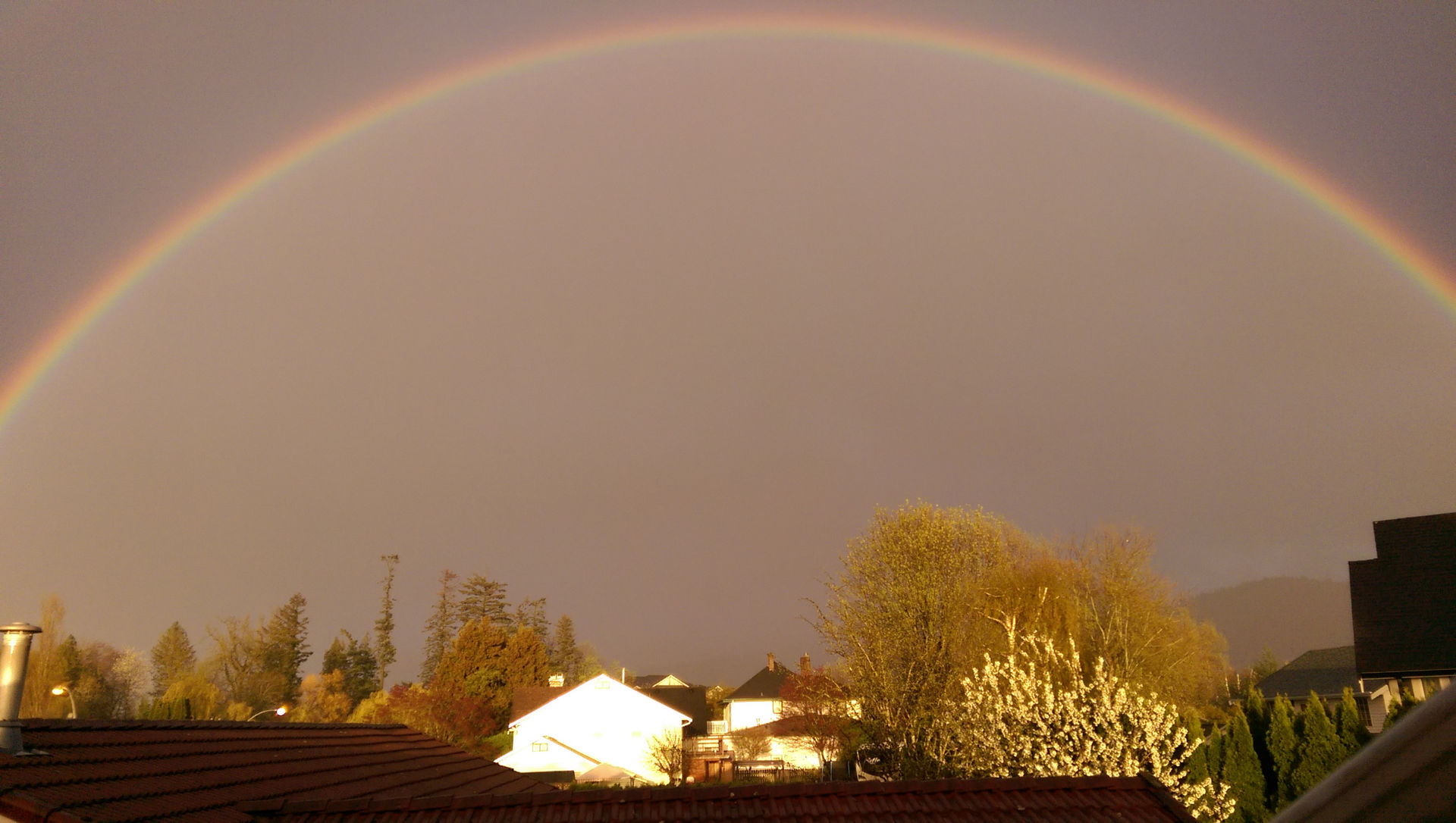 Chilliwack rainbow