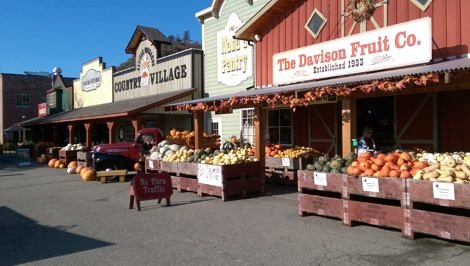 Country store fall harvest