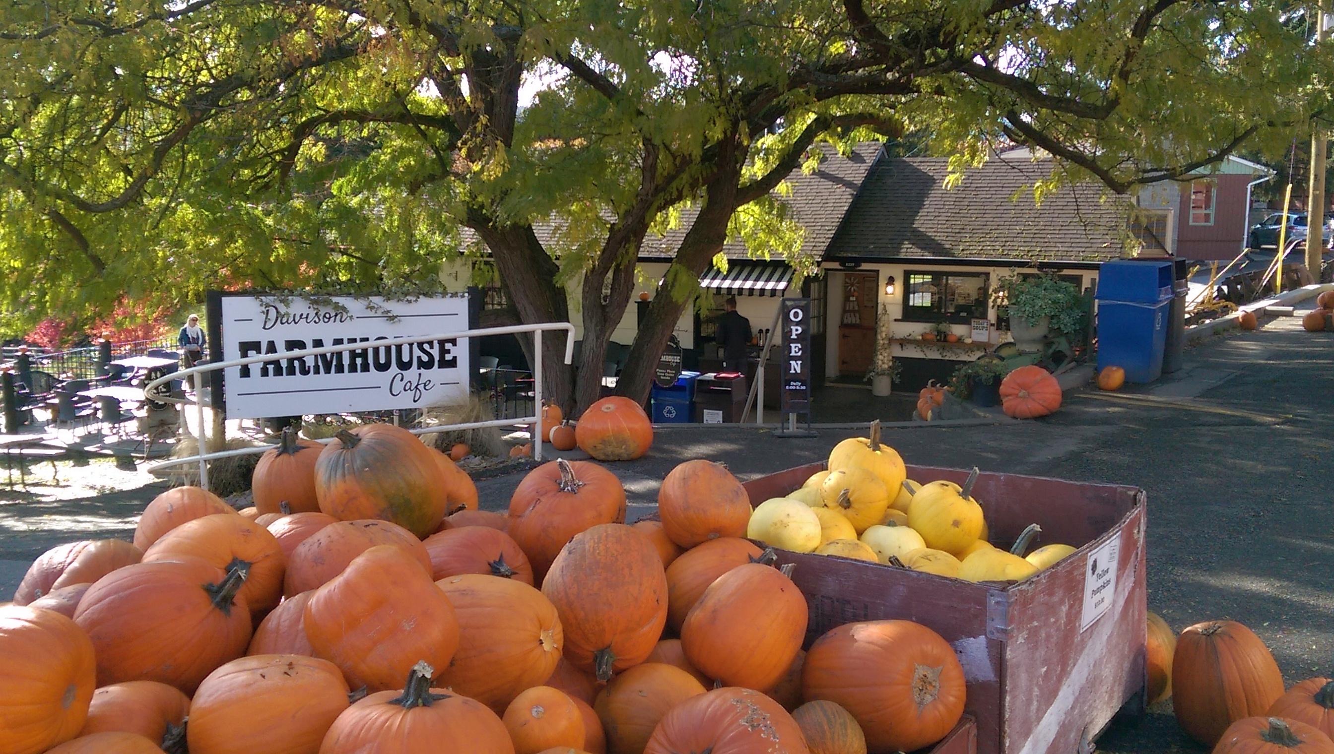 Davidson Orchards Farmhouse Cafe