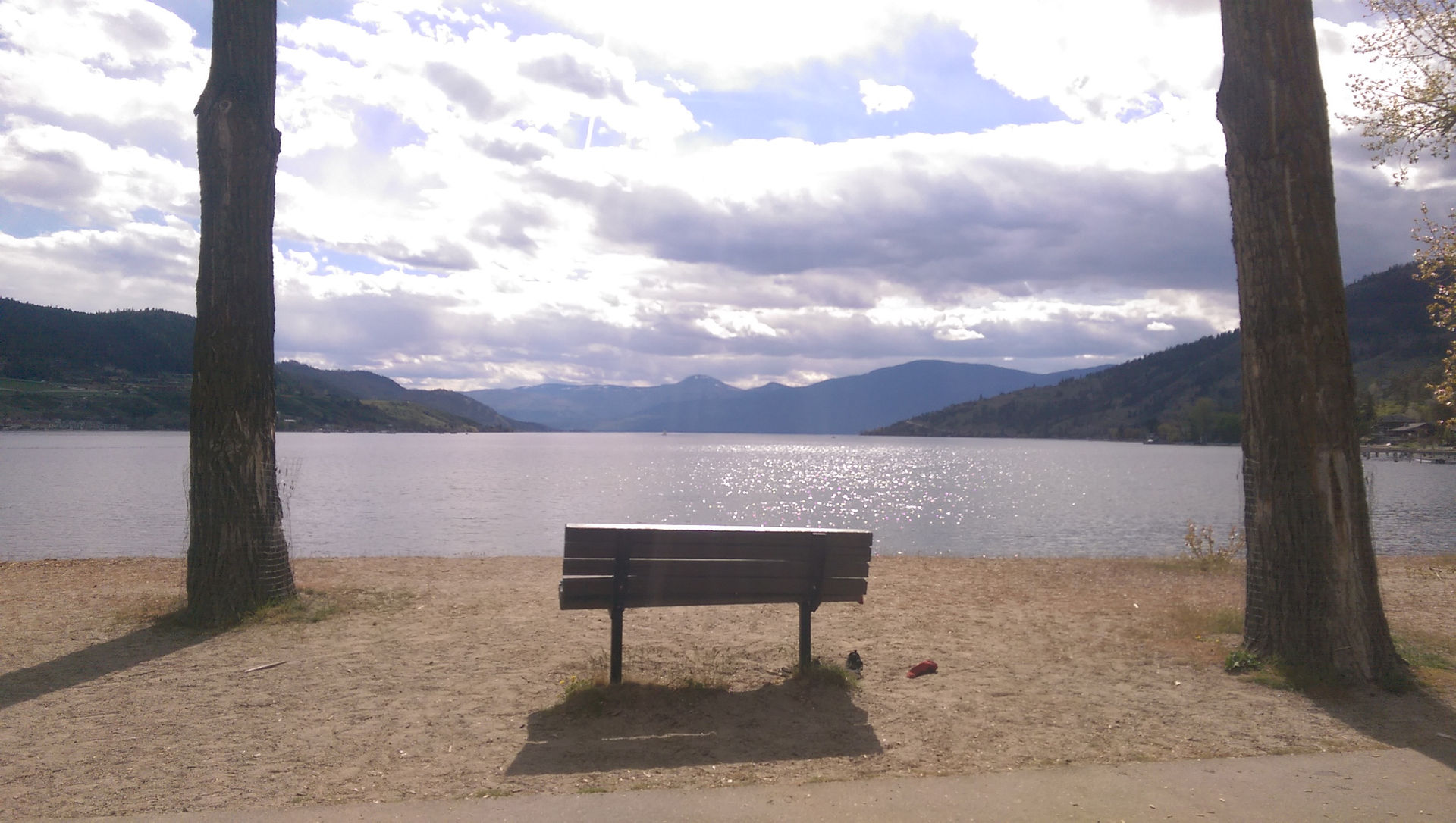 Lakeside bench