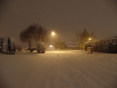 Snowy night n the suburbs