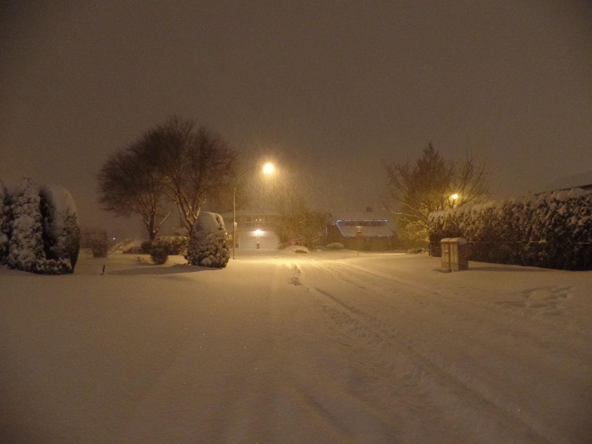 Snowy night n the suburbs