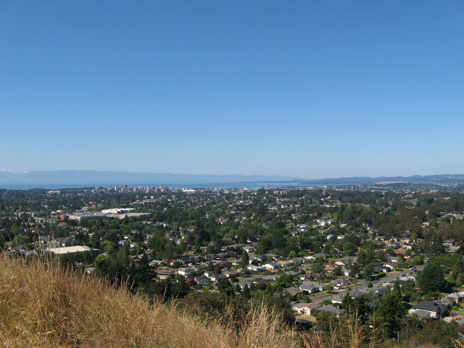 View of Victoria from Mt Tolmie