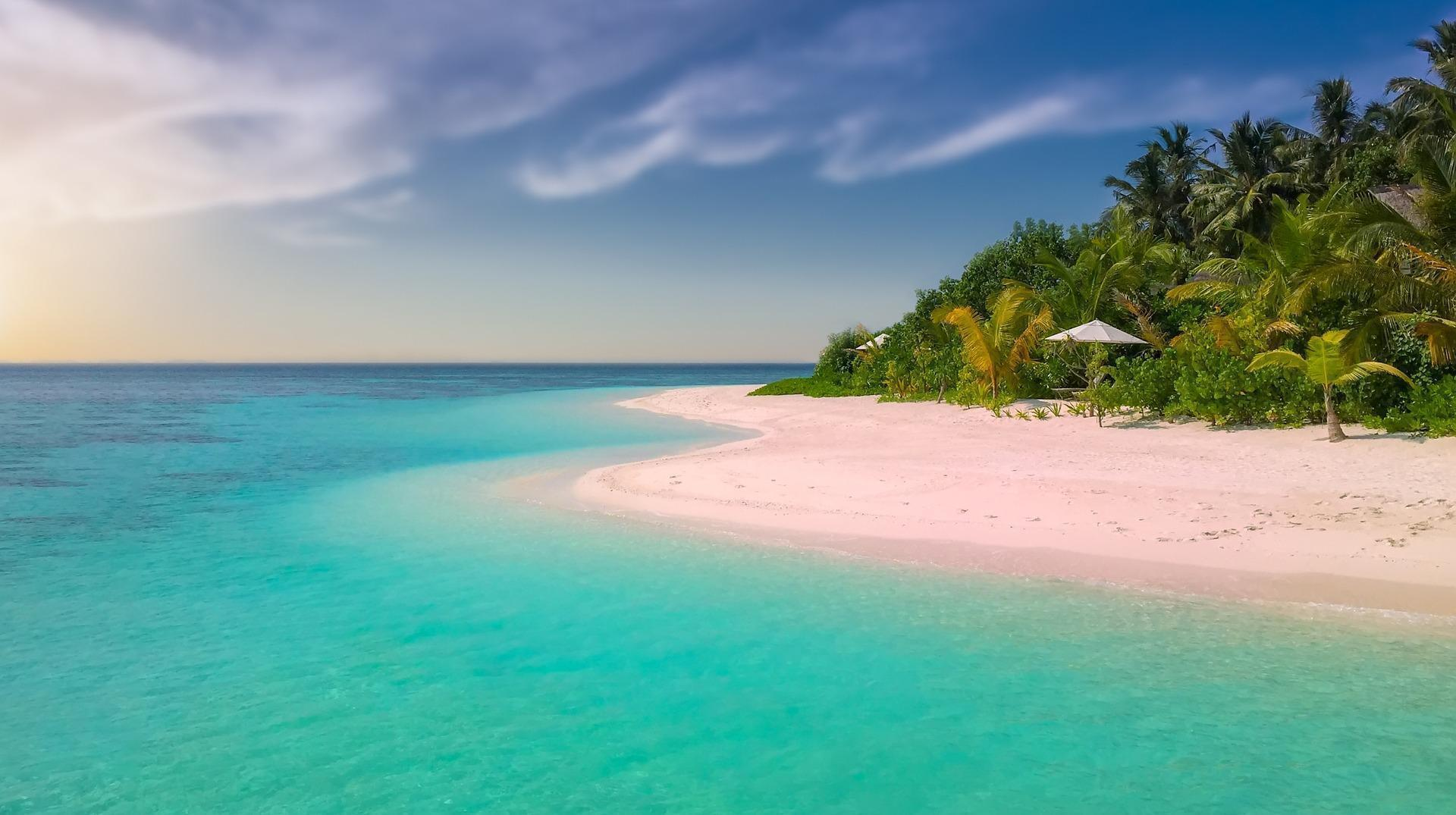 White sand tropical beach on island paradise with palm trees