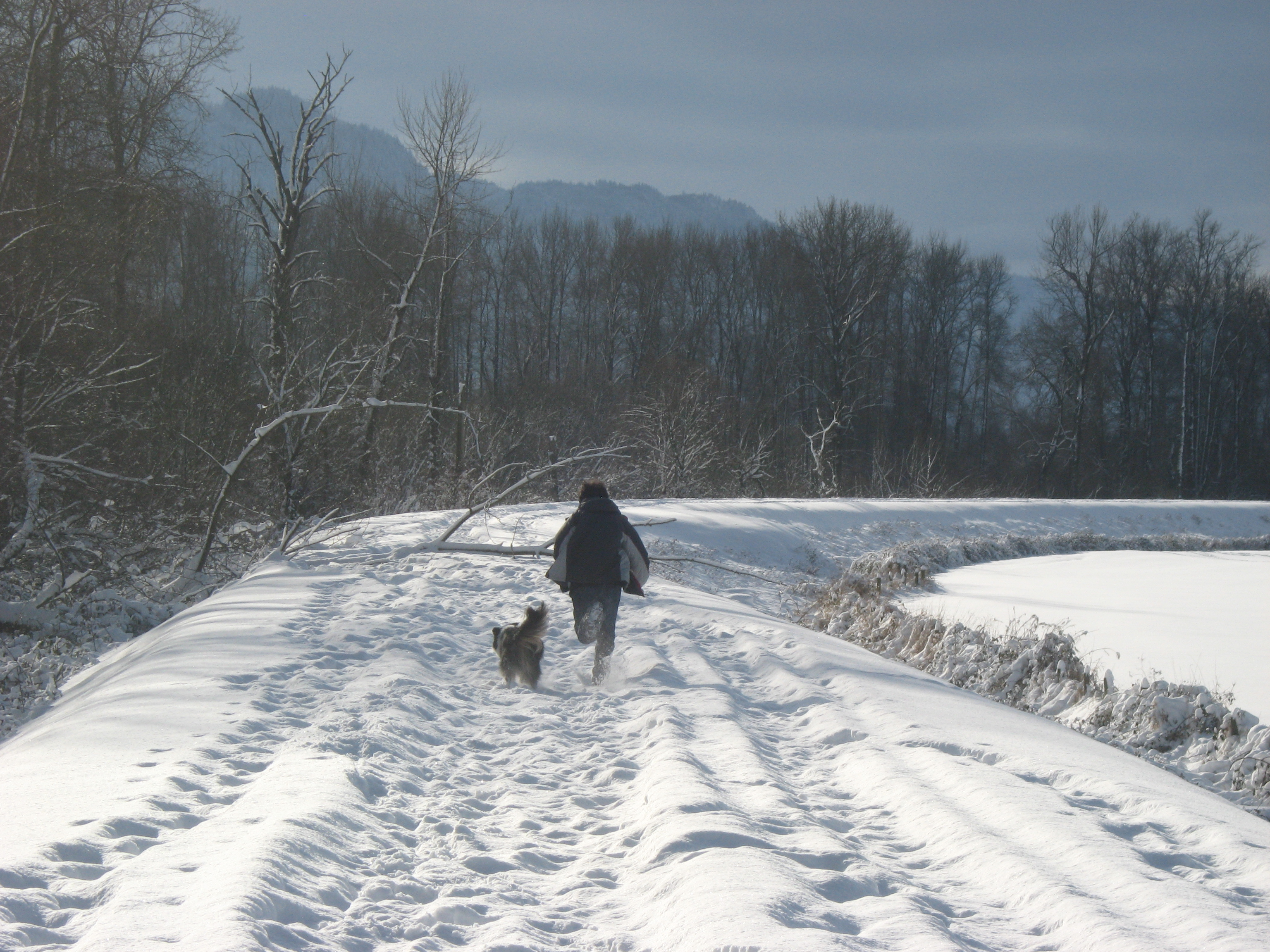 Boy Running with Dog in the Snow