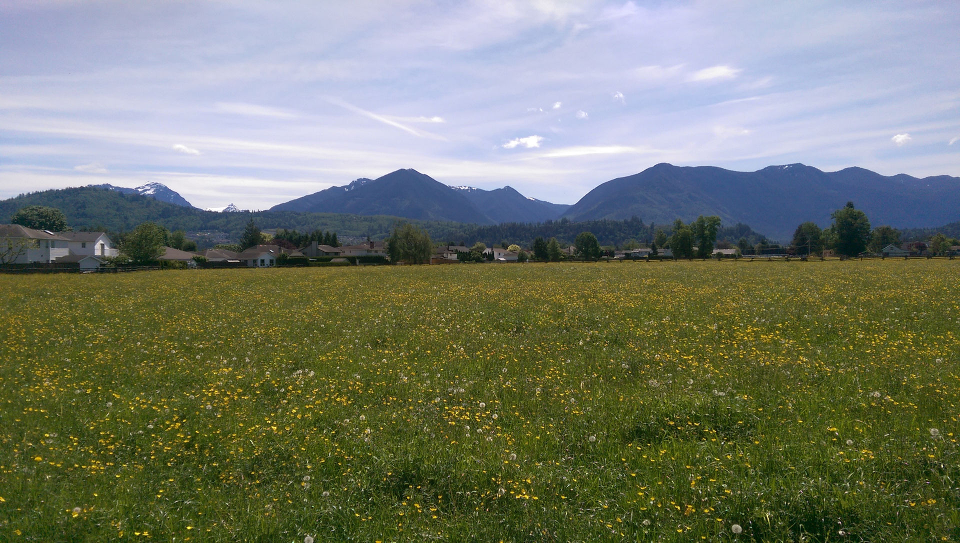 chilliwack country living